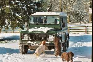 Estate Landrover 90