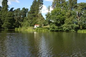 Estate Low Lake 1